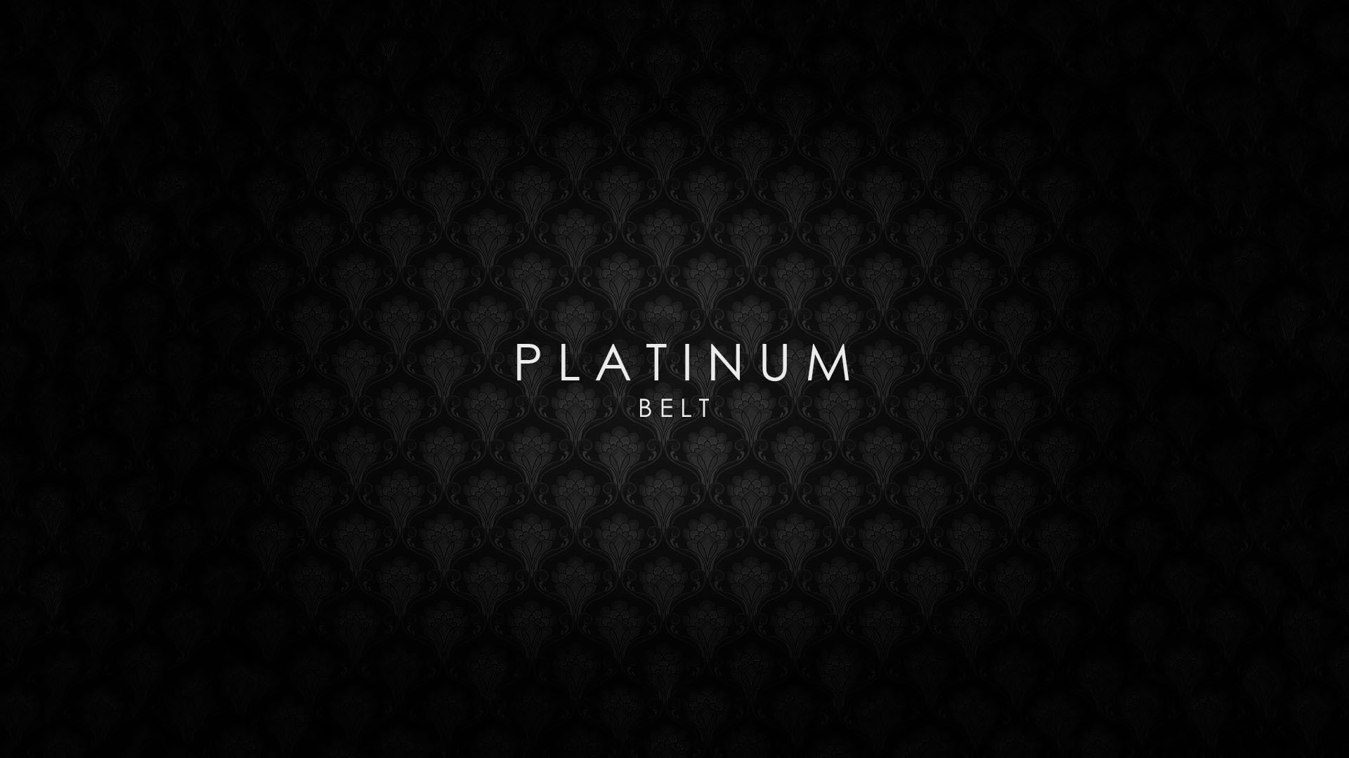 platinum belt Ivan Real Estate Concept – Platinum Belt PLATINUM BELT